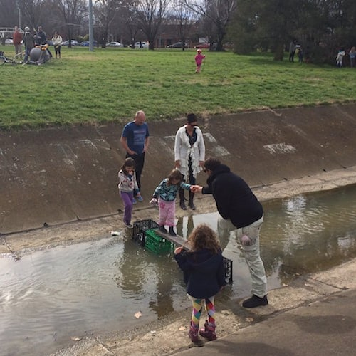 Making Canberra A Human Centred City