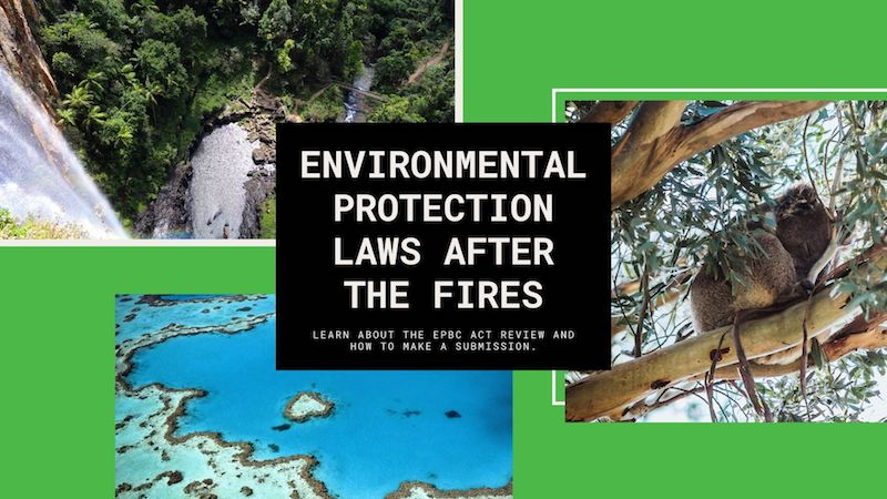 Environmental Protection Laws After The Fires: Learn About The EPBC Act Review And How To Make A Submission.