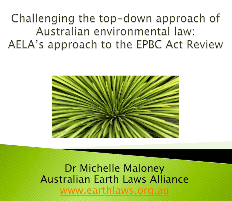 Reviewing Environment Laws After The Fires: Resources From The Webinar
