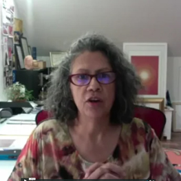 Covid Democracy Webinar Series: Indigenous Democracy Now